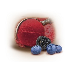 KORAL Vana Lesní ovoce sorbet exklusive 5 litrů